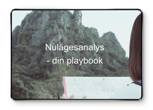 nulagesanalys---din-playbook